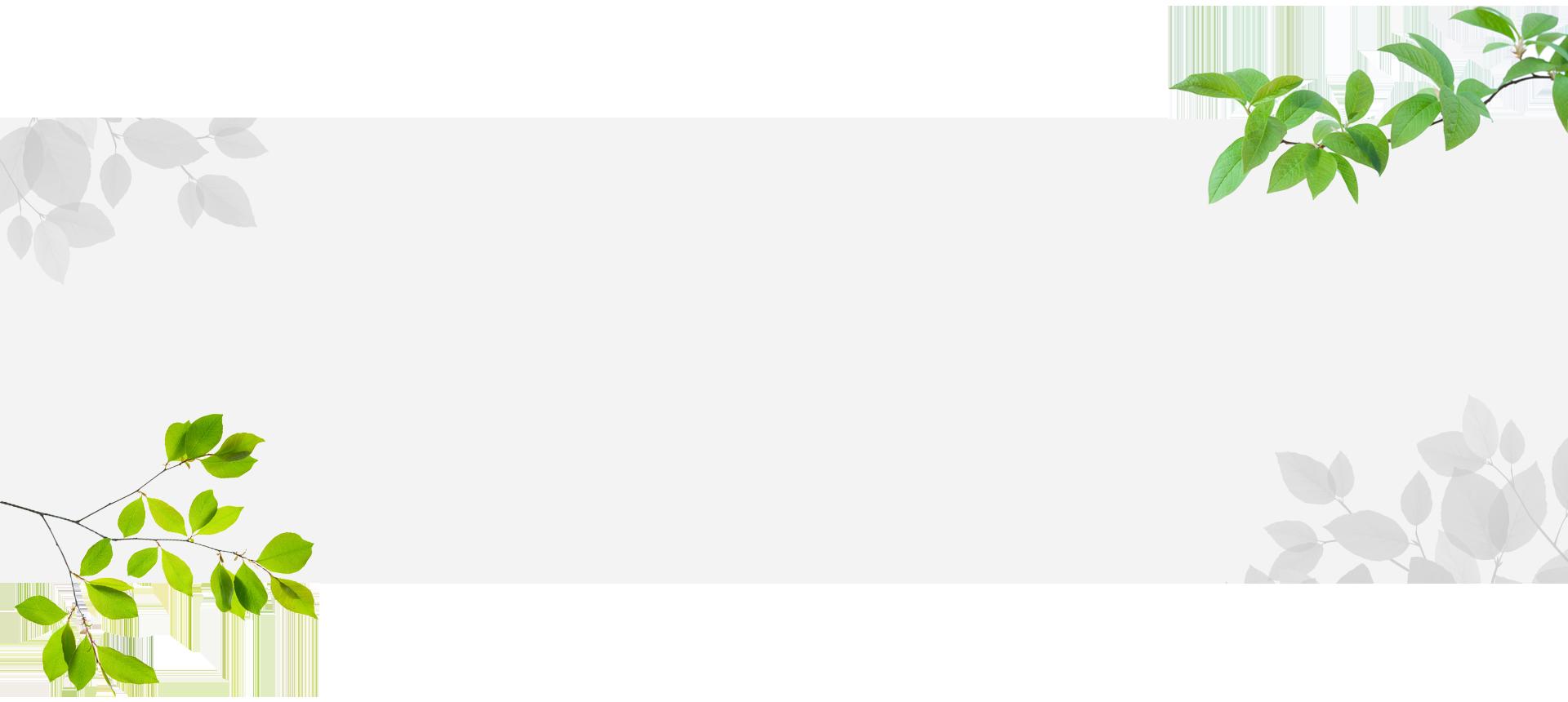 bg_1920x860