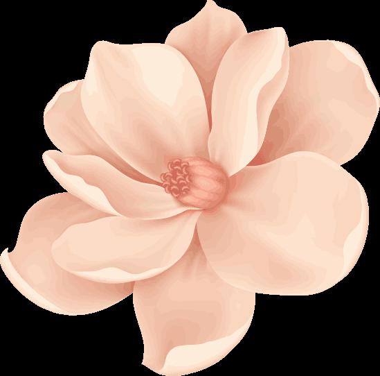 bg-flower-2.png