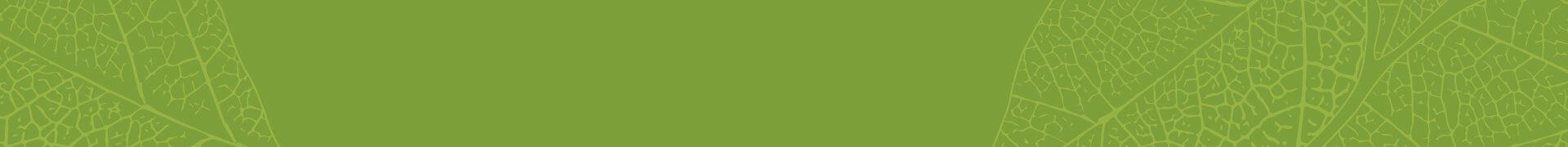 bg_green_01